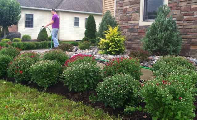Proper landscaping around french drains